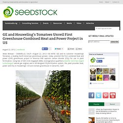 GE and Houweling's Tomatoes Unveil First Greenhouse Combined Heat and Power Project in US