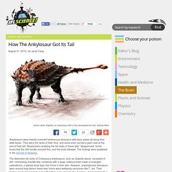 How The Ankylosaur Got Its Tail