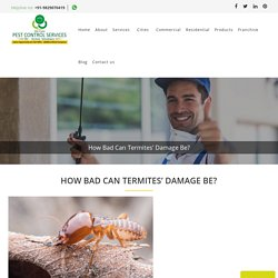 How Bad Can Termites' Damage Be?