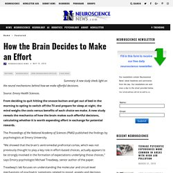 How the Brain Decides to Make an Effort
