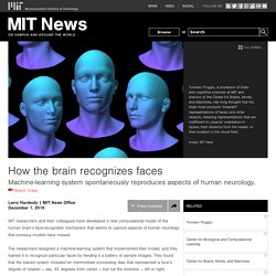 How the brain recognizes faces