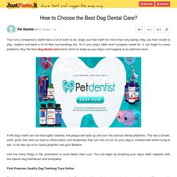 How to Choose the Best Dog Dental Care?