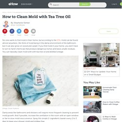 How to Clean Mold with Tea Tree Oil