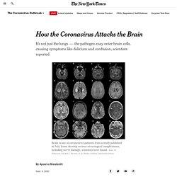 How the Coronavirus Attacks the Brain