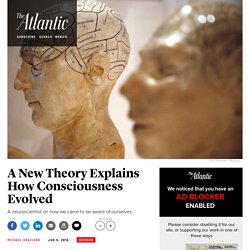 How Did Consciousness Evolve?