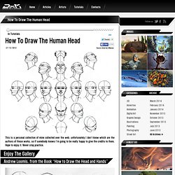 How To Draw The Human Head