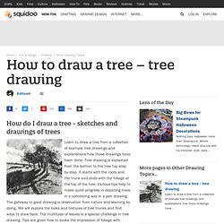 How to draw a tree - tree drawing