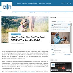 How You Can Find Out The Best GPS Pet Trackers For Pets? - Articles Cloud