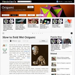 How to Fold Wet Origami