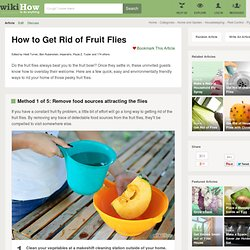 Six Methods to Get Rid of Fruit Flies (with pictures)