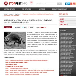 How to get rid of dust mites in 5 steps