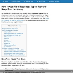 How to Get Rid of Roaches: Top 15 Ways to Keep Roaches Away