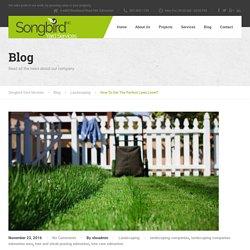 Get Best Landscape Maintenance Services