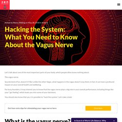 How to Hack Your Own Vagus Nerve