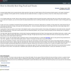 How to Identify Best Dog Food and Treats