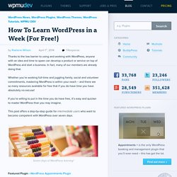 How To Learn WordPress In One Week (Without Spending a Cent)