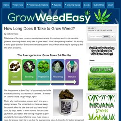 How Long Does It Take to Grow Weed?