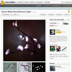 How to Make Cherry Blossom Lights - StumbleUpon