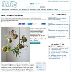 How to Make Kokedama - Healthy Home