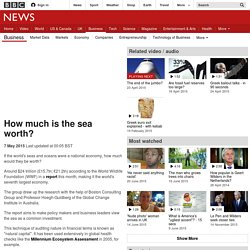 How much is the sea worth? - BBC News