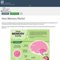 How our Memory Works - Pmemory