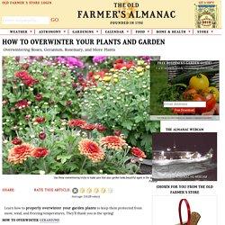 How to Overwinter Garden Plants