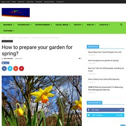 How to prepare your garden for spring?