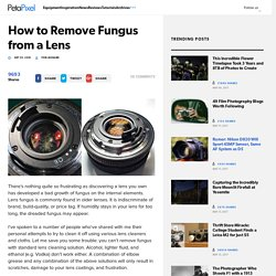How to Remove Fungus from a Lens