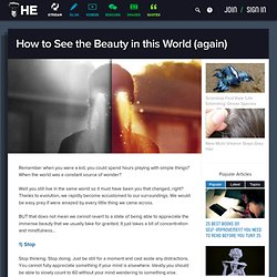 How to See the Beauty in this World (again)