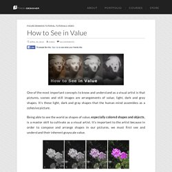 How to See in Value