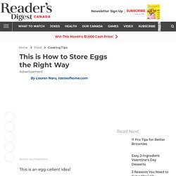 How to Store Eggs the Right Way