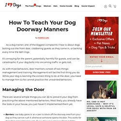 How To Teach Your Dog Doorway Manners