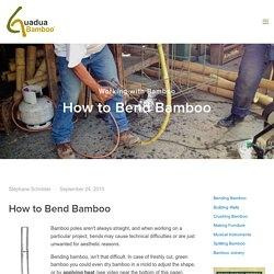 How to Bend Bamboo — Guadua Bamboo