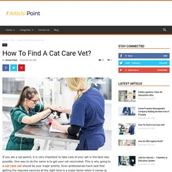 How To Find A Cat Care Vet?