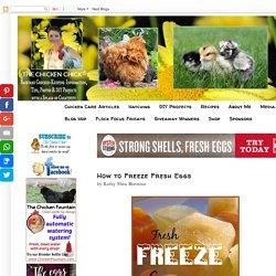 How to Freeze Fresh Eggs