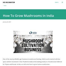 How To Grow Mushrooms In India