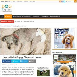 How to Make Doggy Diapers at Home