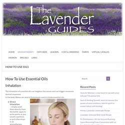 The Lavender Guides