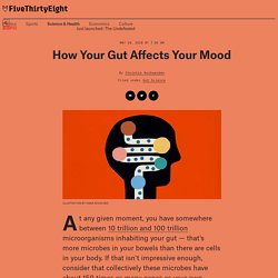 How Your Gut Affects Your Mood