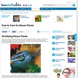 Fertilizing House Plants""