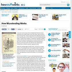 """How Microlending Works"""""""