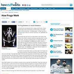 "HowStuffWorks ""The Frog Skeletons vs. Human Skeletons"""