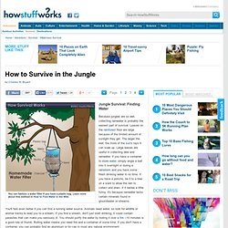 Jungle Survival: Finding Water""