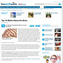 Top 10 Brain Myths""