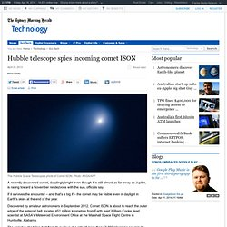 Hubble Space Telescope Spies Comet ISON