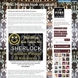Mrs. Hudson took my skull..., A Beginners guide to the BBC Sherlock fandom-