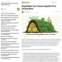 Hugelkultur Can Create Irrigation-Free Garden Beds