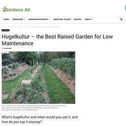 Hugelkultur – the Best Raised Garden for Low Maintenance