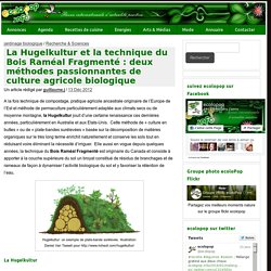 La Hugelkultur et la technique du Bois Raméal Fragmenté : deux méthodes passionnantes de culture agricole biologique - ecoloPop