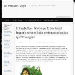 La Hugelkultur et la technique du Bois Raméal Fragmenté : deux méthodes passionnantes de culture agricole biologique